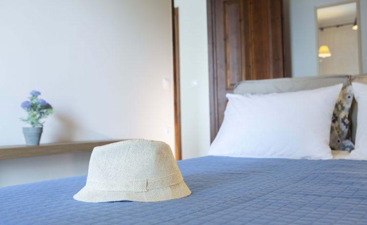 Arokaria Beach House Lefkada Apartments 19